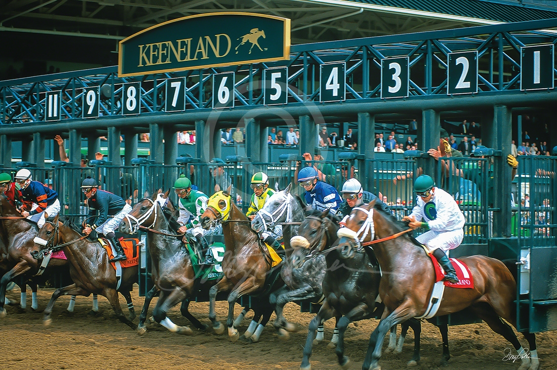 A fine art horse racing print. Powerful Thoroughbred horses strain, their jockeys hold on tight, riding in colorful silks. A horse race at the famous Spring Meet Keeneland Race Course, in the Bluegrass, Lexington, KY. Photo by Doug Prather