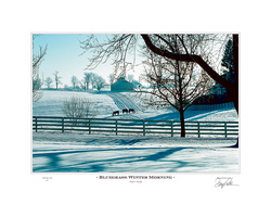 Bluegrass Winter Morning
