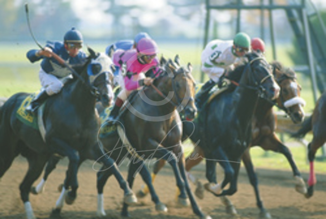And They're Off, Thoroughbred horse racing art print  Jockeys urge